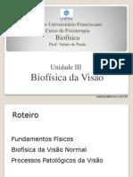 Aula 10 Biofísica da Visão.pdf
