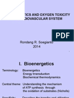 Bioenergetics and Oxygen Toxicity in Cardiovascular System 2014