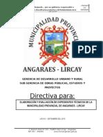 Directiva_exp. Tecnico