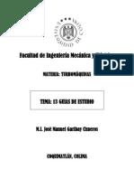13 GUIAS DE ESTUDIO.pdf