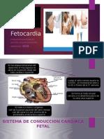 Fetocardia