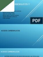 ACIDOS CARBOXILICOS Y ESTERES