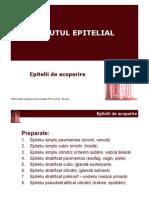 LP Histo Semestrul 1