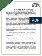 El Multilinguismo en El Perú (Ing. Civil)