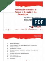 resources-promo-Junin-Paises-Bajos-Cesar-Talavera.pdf