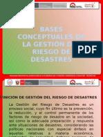 Bases Conceptuales de La Grd