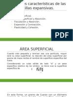 Efectos Del Agua en Los Minerales Arcillosos