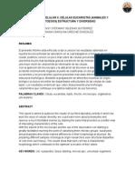 DIVERSIDAD CELULAR II. CÉLULAS EUCARIOTAS (ANIMALES Y PROTOZOOS) ESTRUCTURA Y DIVERSIDAD
