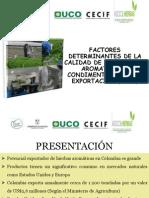 Aromáticas y condimentarias.pdf