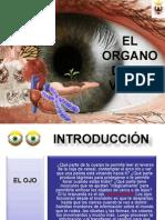 ojo-medio