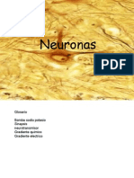 Células Nerviosas e Impulso Nervioso 2015