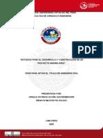 2005 Estudios Para El Desarrollo y Construcción de Un Proyecto Inmobiliario