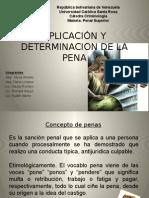 Aplicación y Determinacion de La Pena Exposicion de Penal Superior
