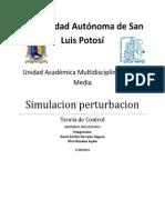 Simulacion perturbacion