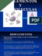 BiomolecInorg2011
