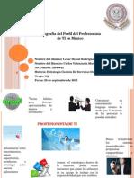 Infografía Del Perfil Del Profesionista de TI en México
