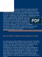 Herencia Cultural.pptx