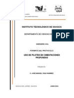 Formato Del Protocolo