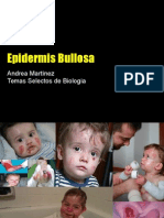 Epidermólosis bullosa