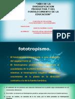 biologia-tropotismo