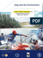 Shrimp Farming and the Environment