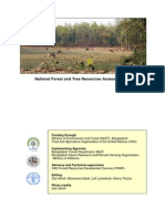 NFA Final Report (1) (1)