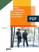 Vision y Necesidades de Empresas Familiares