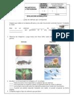 Evaluación Ciencias 5to primaria