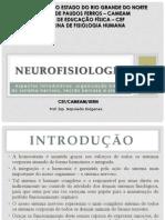 Aula de Neurofisiologia Aspectos Introdutorios