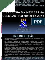 Aula de Fisiologia Da Membrana O Potencial de Ação