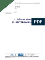 Rapport Final Micmac - SECTOR PANELERO