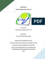 187225856-referat-DBD.doc