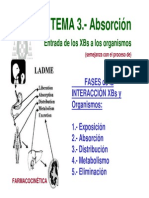 T3-exposicion-absorcion
