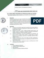 Directiva Nº 022_produccion de Texto (2)