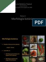 Morfologia de Plantas