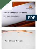 VA Organizacao Metodologia Educacao Infantil Aula 07 Tema 07