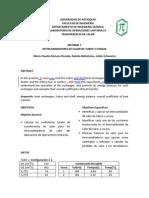 Informe Rev Tubos Coraza Mclaudia
