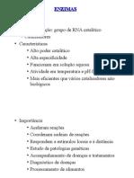 enzimas SL.ppt