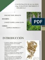 Composición y Concentración de Alcaloides en Lupinus Exaltatus