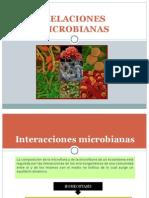 MICROBIOLOGIA AMBIENTAL. Relaciones Microbianas