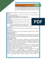CAMPOS DE ESTUDIOS DE LA FILOSOFÍA.docx