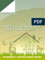 07 Derecho HumanoMAS