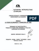 La Crisis Economica y Financiera de 1995.pdf