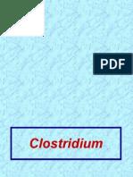 LecturePP17&18Clostridium