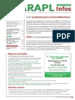 n153 Actif Professionnel Et Immobilisations