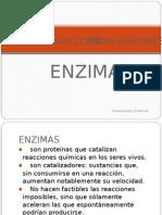 enzimas 111