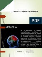 Introducción a la psicopatologia de la memoria