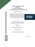 Analisis Industrial de Factibilidad 1