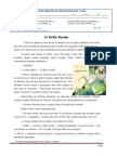 Modelodeteste-português 5º Ano