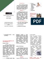 leaflet lbp koas